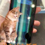 iPhoneXRにカラフルな縦線が・・・。タッチも効かず操作出来ないそんな時!当店なら、即日で修理出来ちゃいます(^O^)/